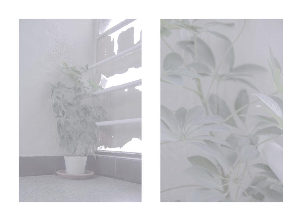 internat_kultura-6