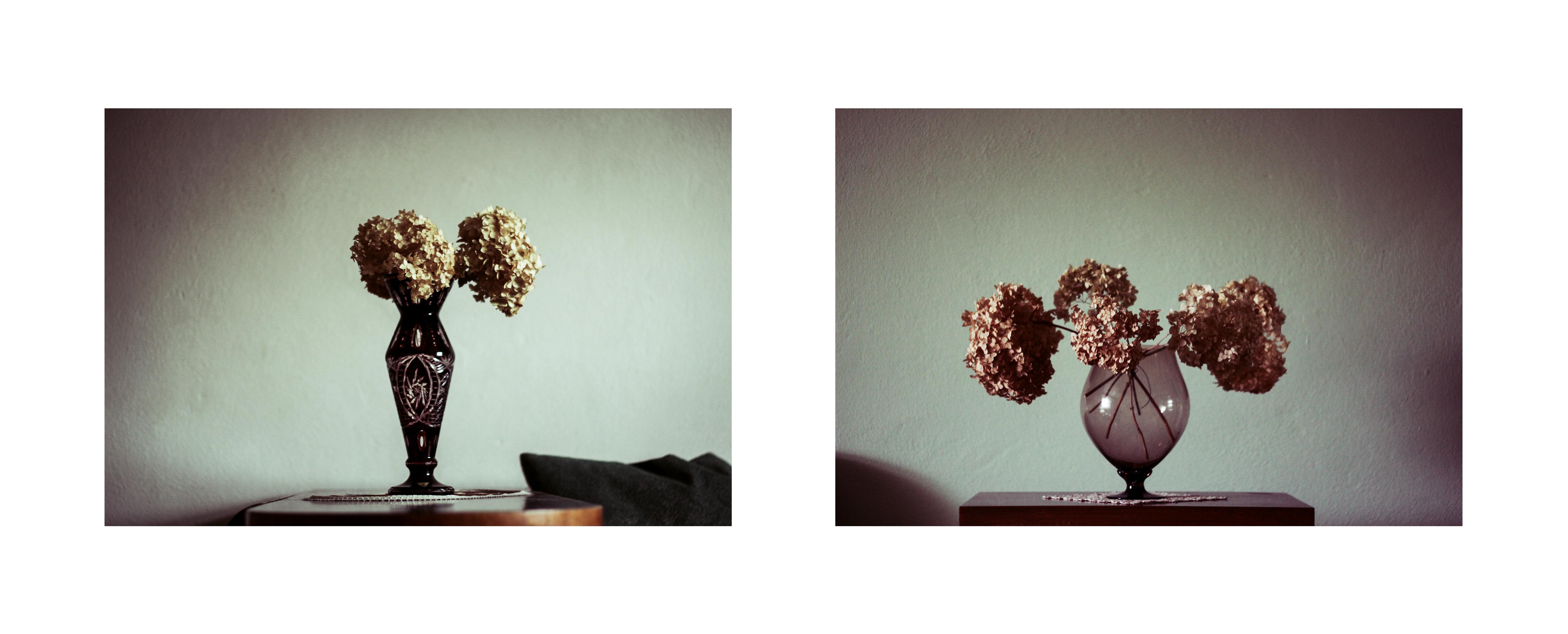 portret_bez_portretu-2